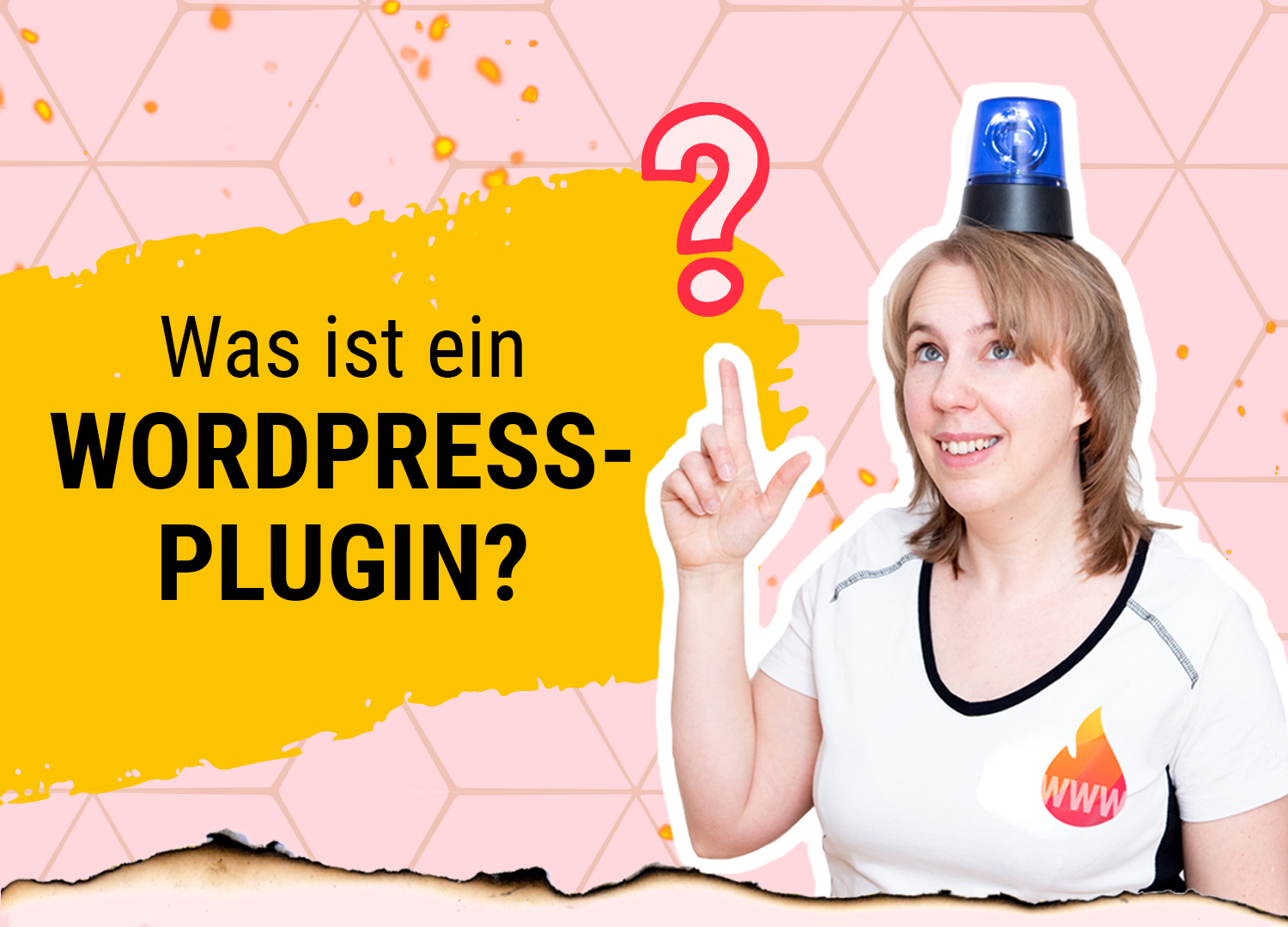 Was ist ein WordPress-Plugin?