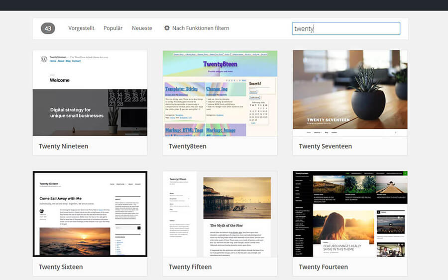 Was ist ein WordPress Theme